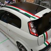 car_231s